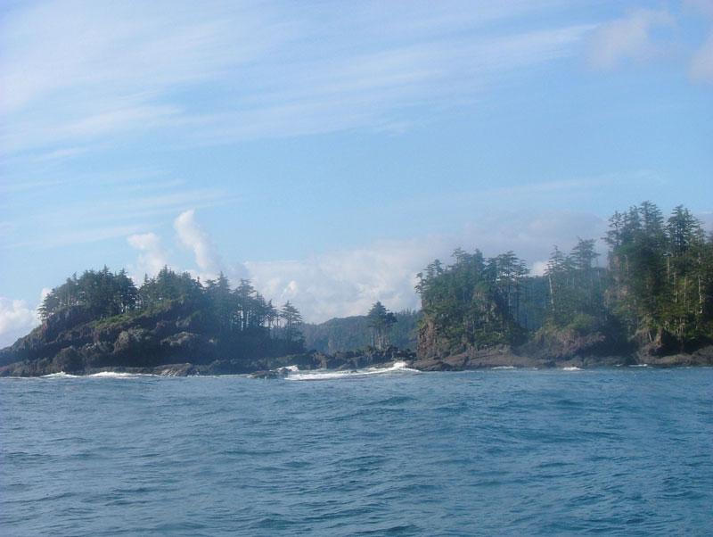 North Island Fishing