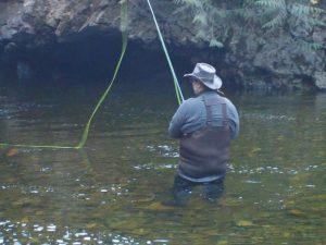 Fly Fishing Far North 3