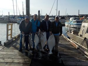 Group Salmon and Halibut Fishing in Port Hardy and Port Mcneill