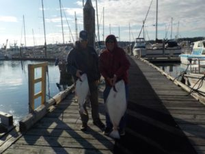 Halibut Fishing Port McNeill